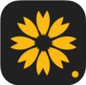 超美壁纸苹果版v1.3